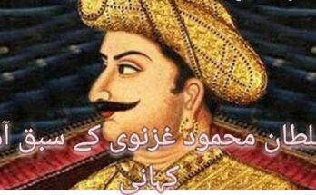 سلطان محمود غزنوی